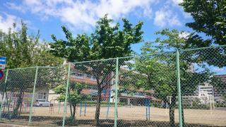 桜城小学校