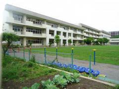 府中第一小学校