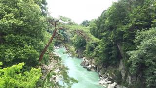 名勝・天竜峡