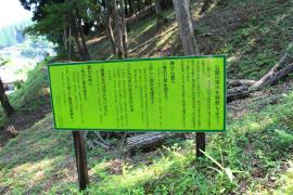 青蓮寺公園