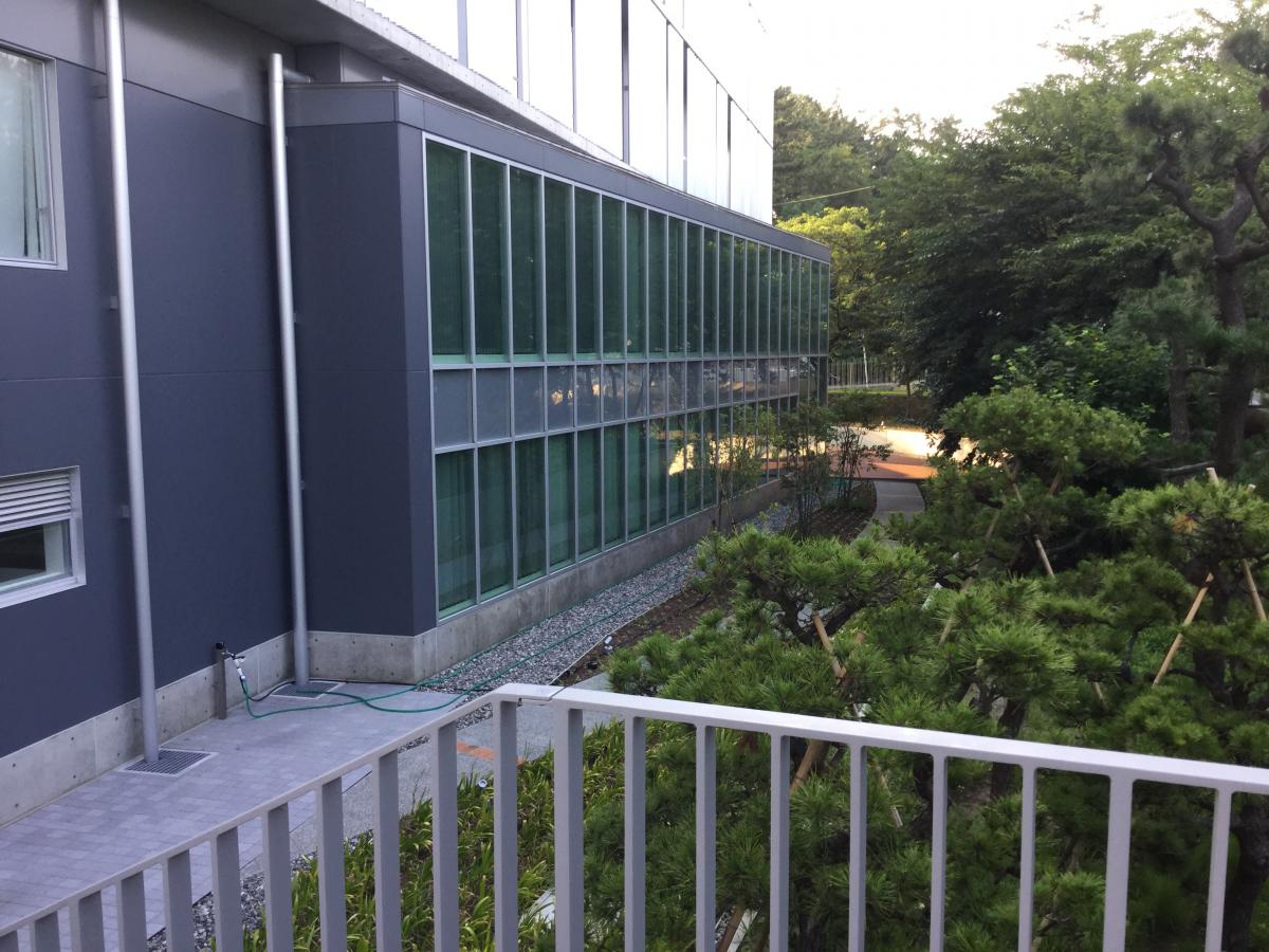 大学 新潟 青陵
