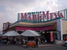 マルミヤストア秋津店