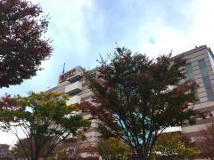 港北TOKYU S.C.