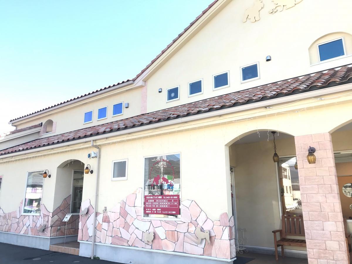 丹沢 の 森 動物 病院