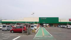 コープ 愛子店