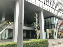 楽天損害保険株式会社 熊本支店