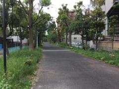 杣場川緑道