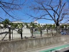 宮城小学校