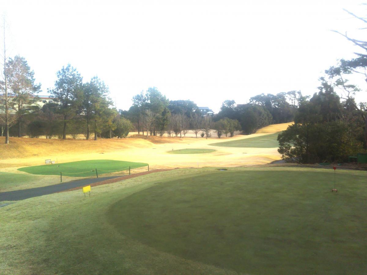 東条 クラブ やしろ ゴルフ