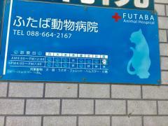 ふたば動物病院
