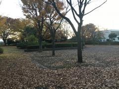 藤見中央公園