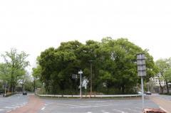 清水橋街園