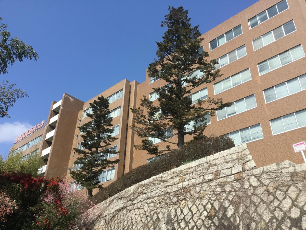 大学 川崎 医療 短期