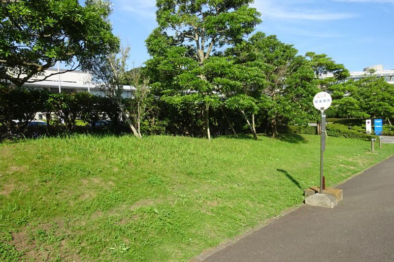 「湘南国際村センター」バス停留所