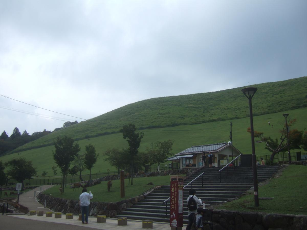 若草山です。