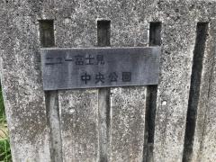 ニュー富士見ケ丘中央公園