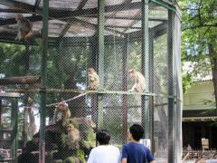 小田原動物園