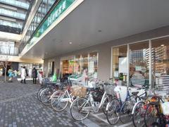マルエツプチ 港南シティタワー店