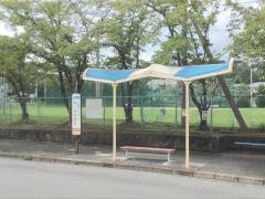 「青山幼稚園前」バス停留所