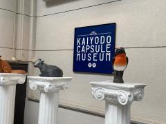 海洋堂フィギュアミュージアム黒壁龍遊館
