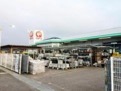 コメリハード&グリーン 北条店