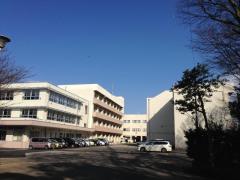 坪井中学校