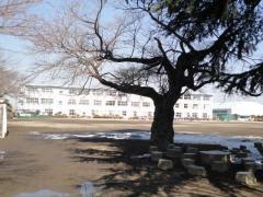 上三川小学校