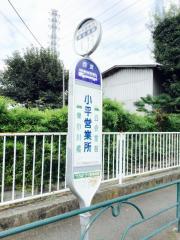 「小平営業所」バス停留所
