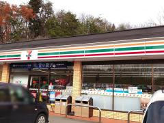 セブンイレブン 飯野青木平店