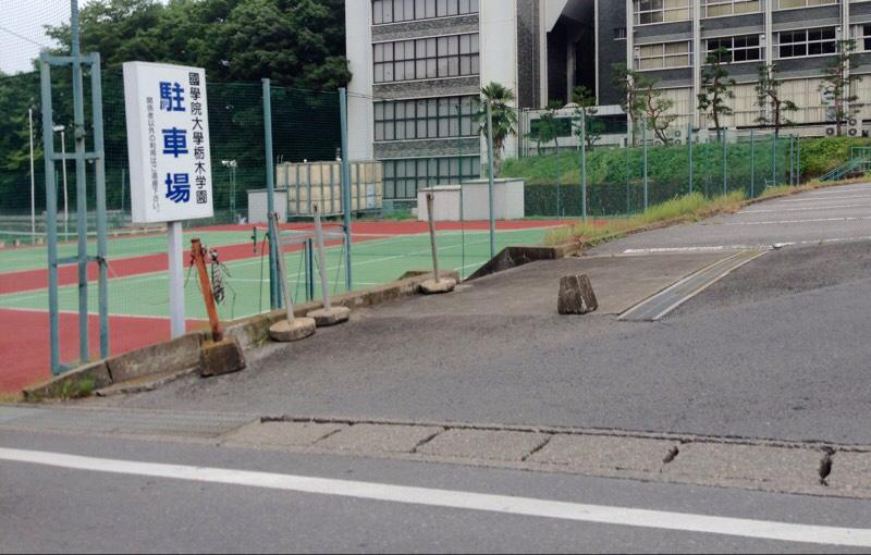 高校 栃木 國學院 大學